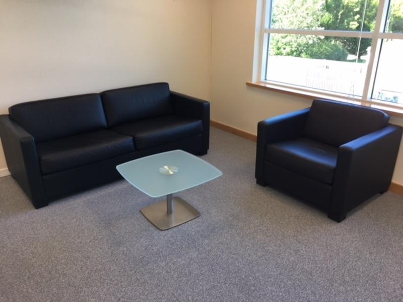 Aries leather sofa